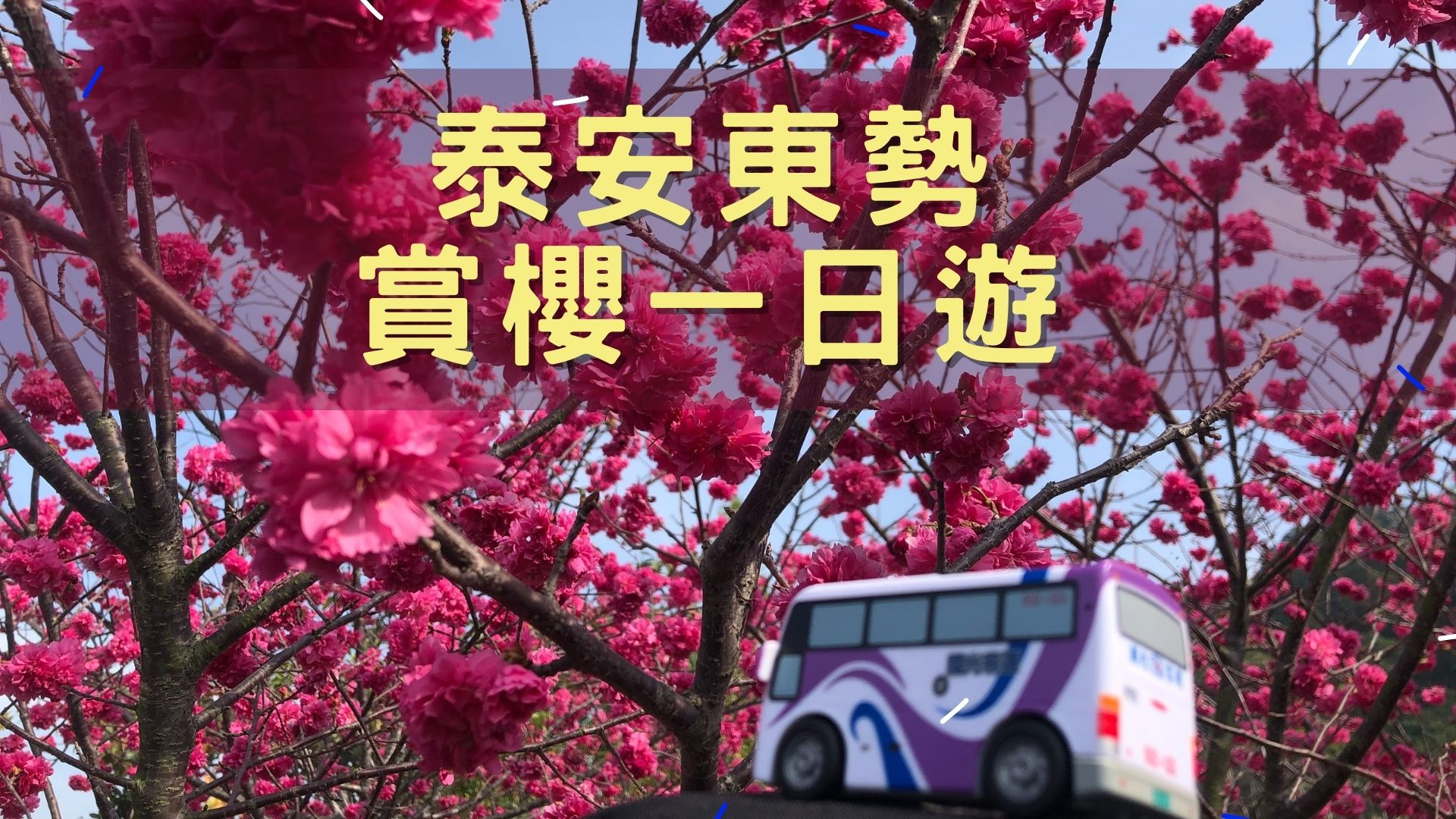 https://kw-travel.com.tw/wp-content/uploads/2019/08/泰安賞櫻東勢林場.jpg
