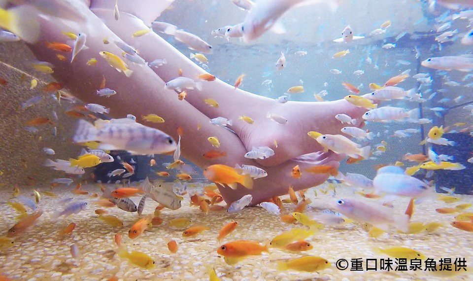 【宜蘭泡湯】礁溪湯遊一日(ILN56)