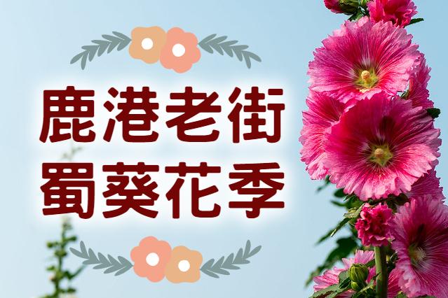 【2021蜀葵花季】花心小鹿來七陶 彰化鹿港蜀葵花季一日遊 (CWH20)