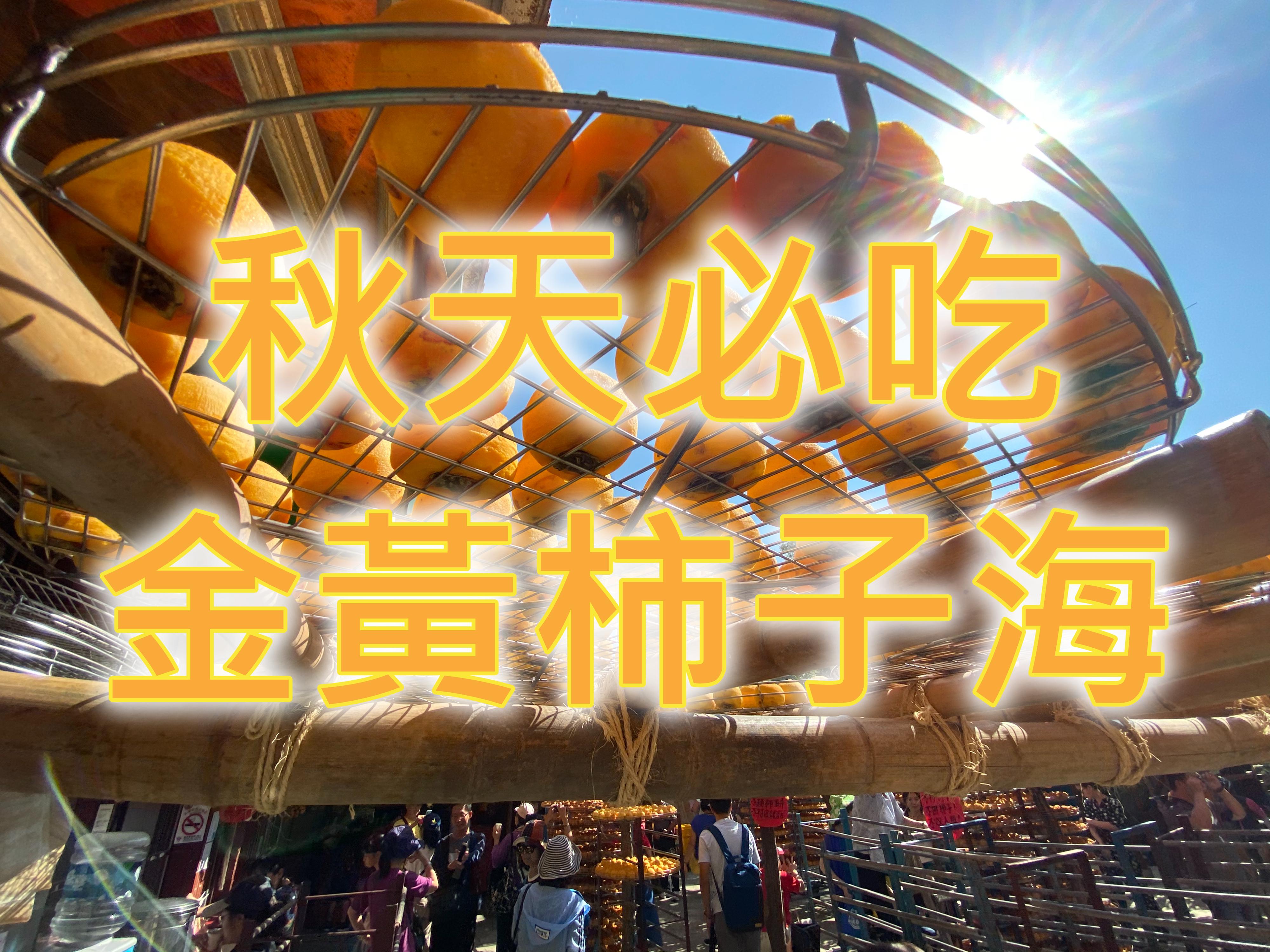 🧡【美食之秋】海柿山盟來吃餅 新竹柿餅米粉一日遊(HSH06)