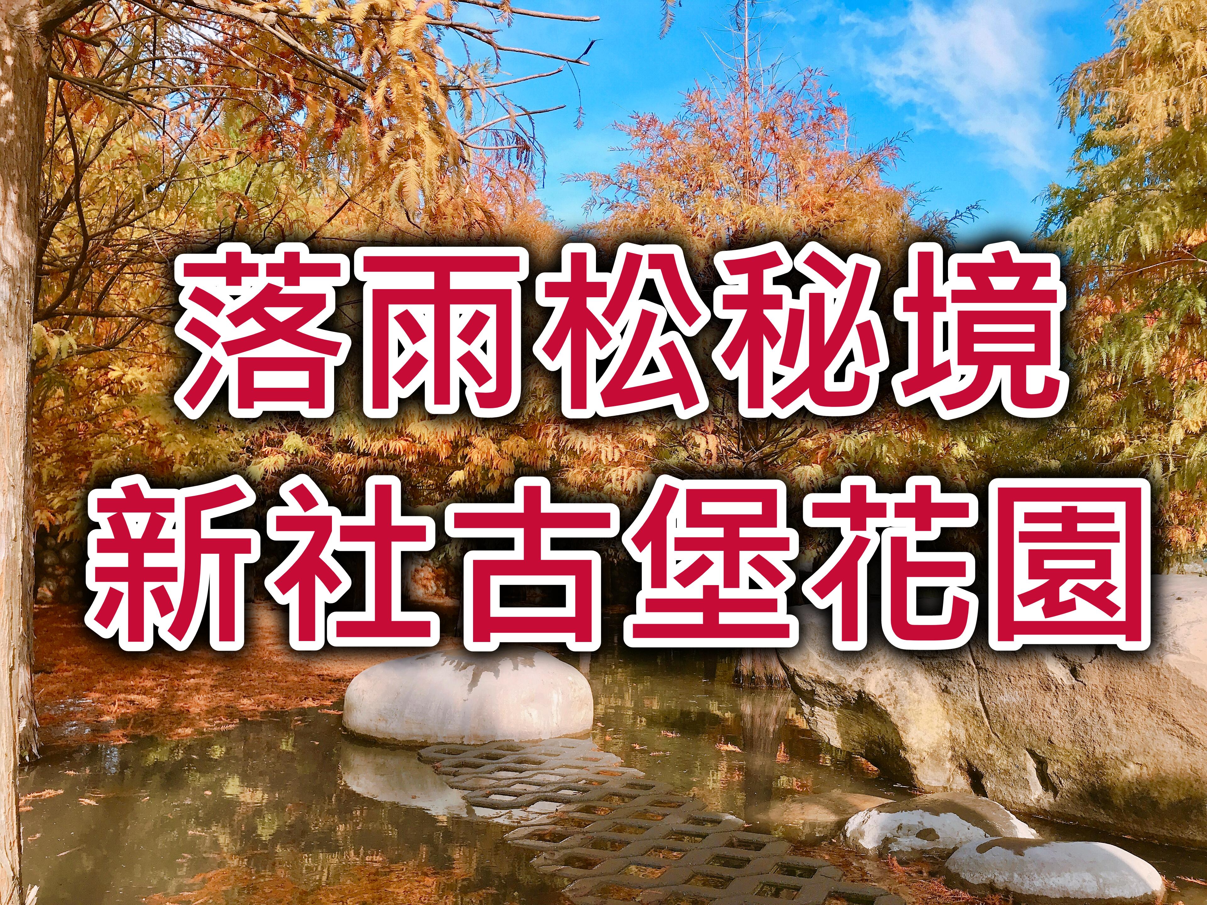 🍁【落羽松秘境】秋風化羽探古堡 台中泰安新社一日遊(TCH04)