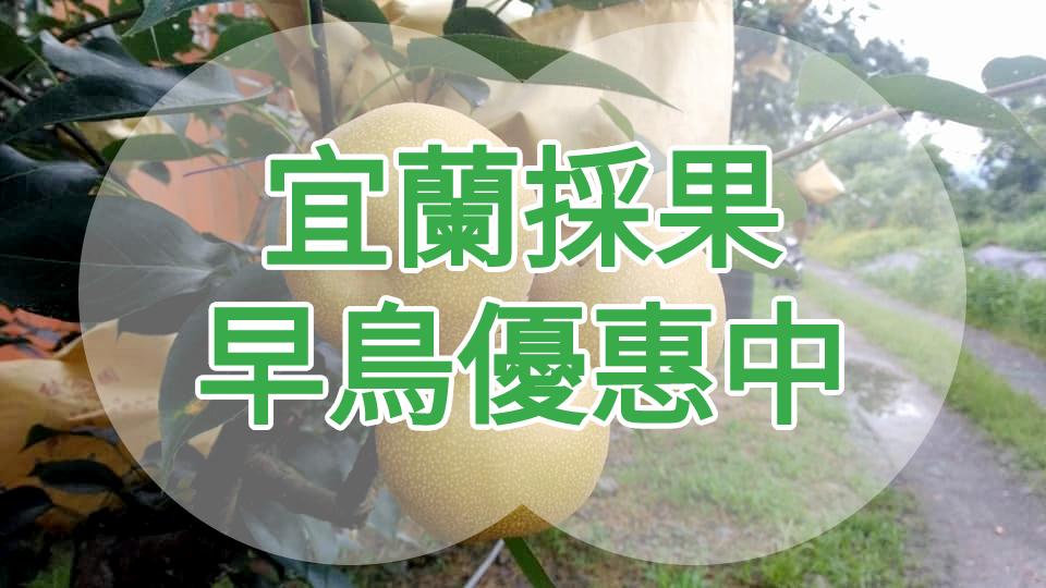 【夏日採水果特輯】這夏採果趣宜蘭一日遊 (ILN26)