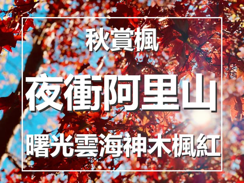 🍁【秋賞楓】雲海舞秋楓 阿里山夜未眠一日遊(CHY15)