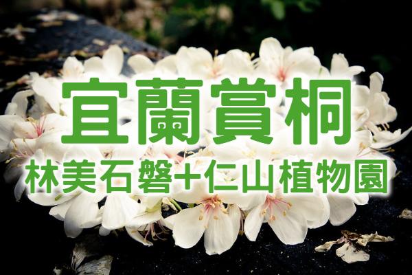 【桐花季】桐心美仁五月雪 宜蘭賞桐一日遊 (ILN42)