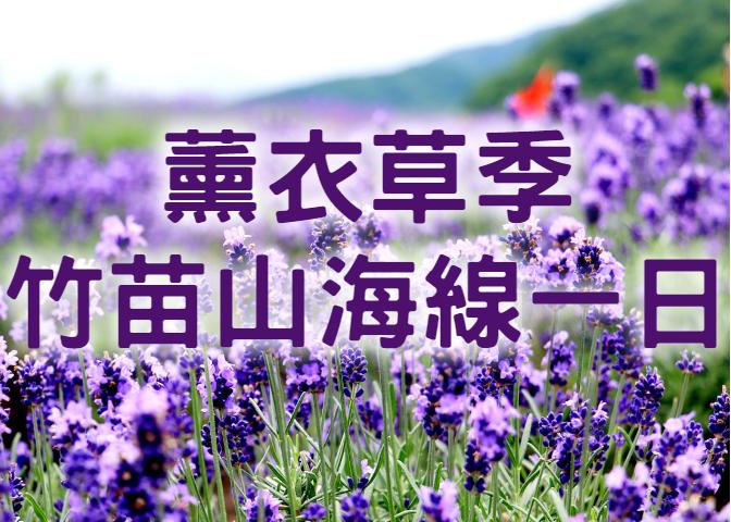 💜【2021薰衣草季】紫想和你在一起 竹苗山海薰衣草一日遊 (MAL15)