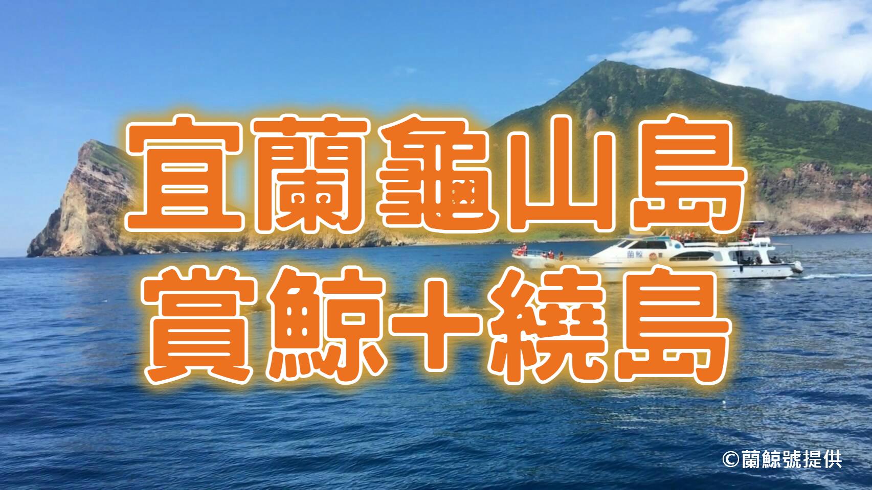 🐳【2021龜山島】宜蘭賞鯨豚一日遊 二合一賞鯨繞島船票+台北⇔烏石港車票(ILN58)