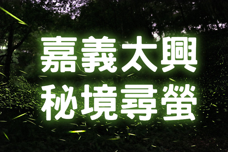 💚【2021螢火蟲季】螢光閃閃金嘉水 嘉義太興尋螢一日遊 (CHY19)