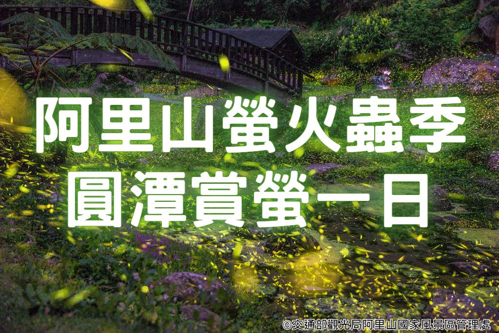 💚【2021螢火蟲季】螢閃螢閃亮金金 圓潭賞螢嘉義南投一日遊 (CHY27)