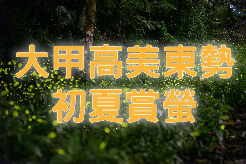 💚【2021螢火蟲季】甲霸螢螢東起來 台中大甲東勢賞螢一日遊 (TCH11)