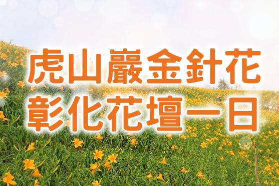 💛【2021金針花季】茉莉遇見金針花 彰化花壇一日遊 (CWH14)