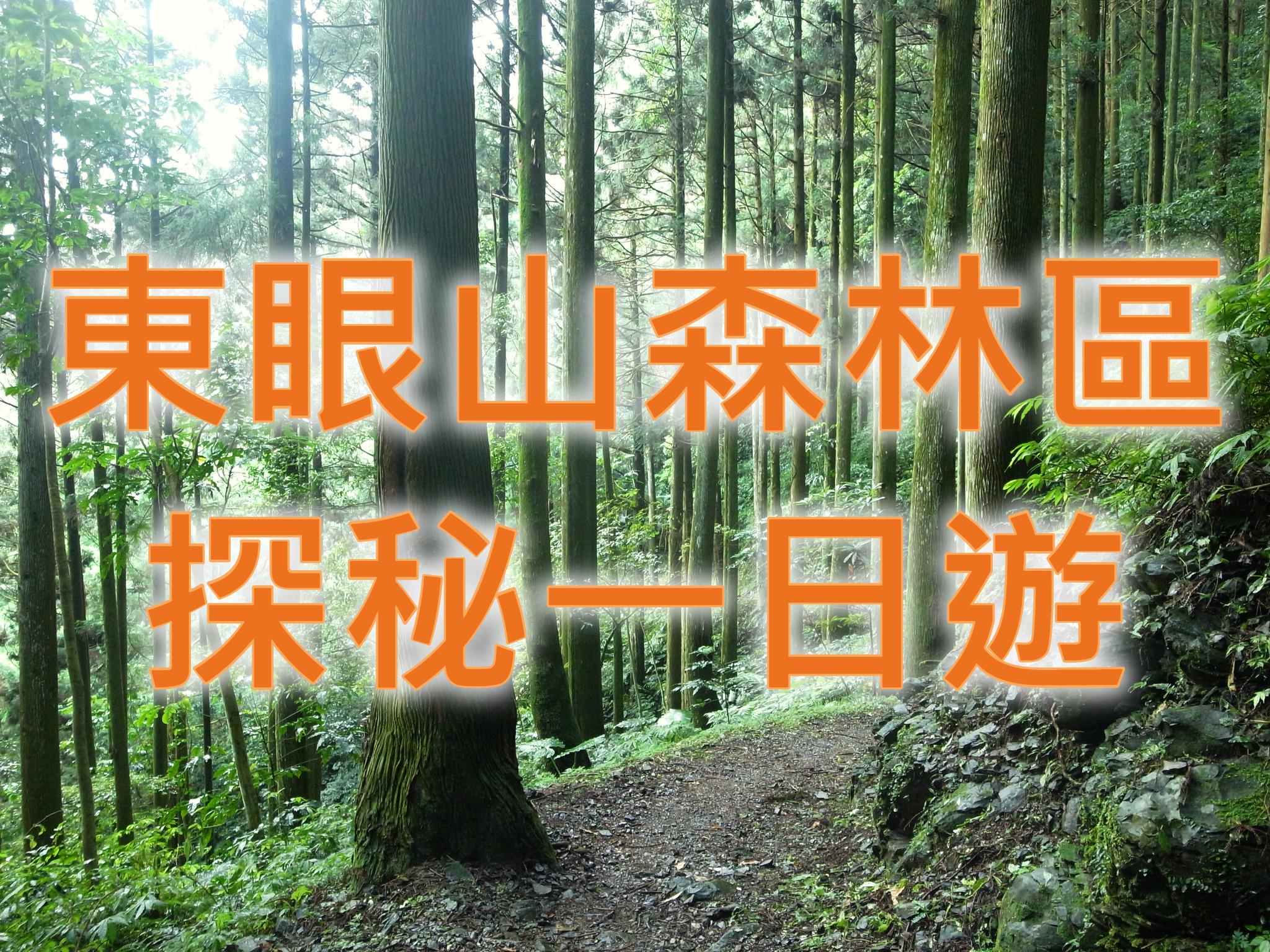 🌲【國家森林區】東眼森林溪遊記 桃園東眼山大溪一日遊(TYU12)