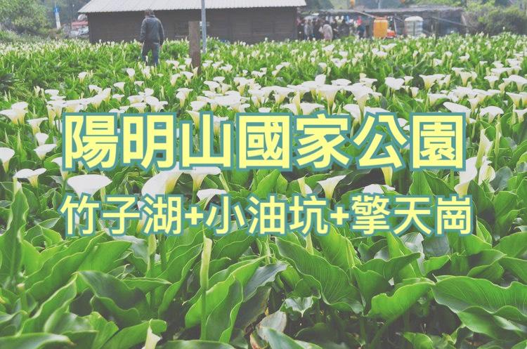 🌄陽明山國家公園一日遊(TPE55)